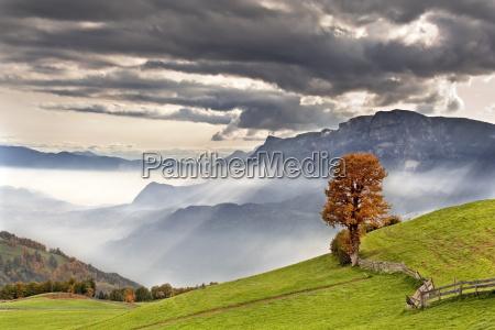 autumn, landscape - 487929