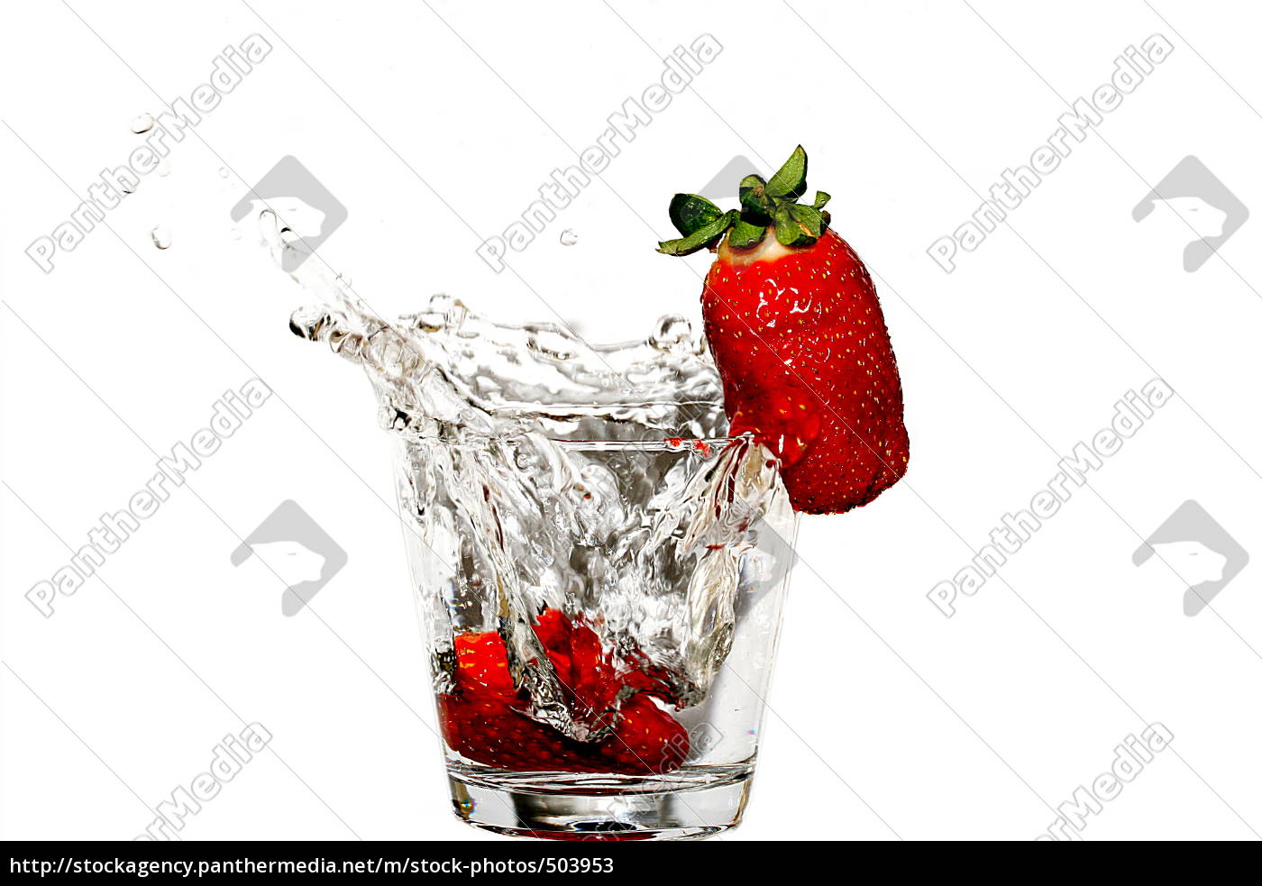 strawberry - 503953