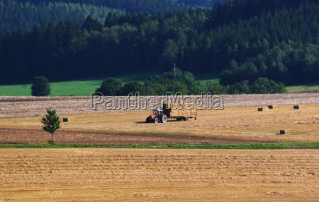 harvest, time - 513563