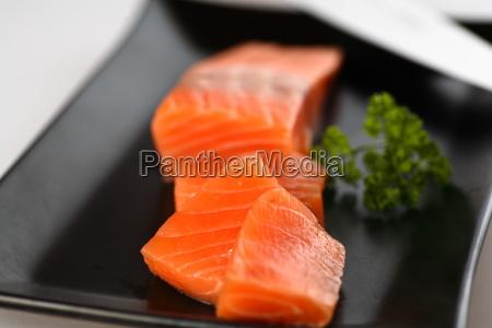 salmon - 515498