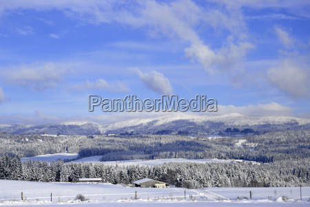 winter, in, the, bavarian, forest - 533690