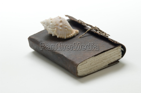 book, with, shell - 544112