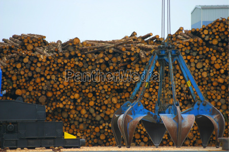 timber, loading - 549447