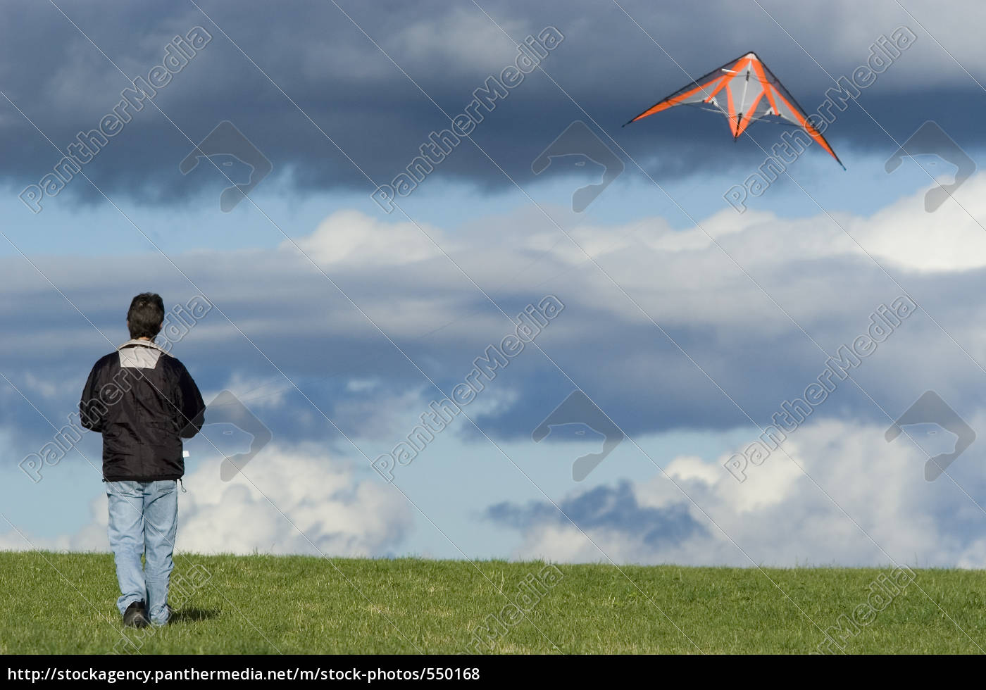 kite, flying, in, autumn - 550168