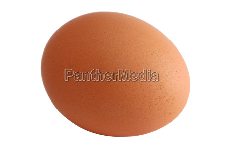 egg, isolated, with, clipping, path - 552076