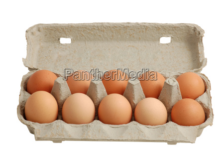 eggs, in, pack, of, 10, isolated - 552063