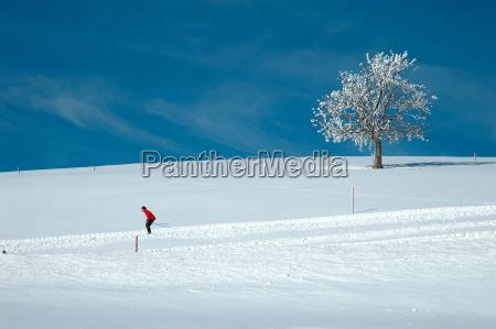 winter, magic - 555060