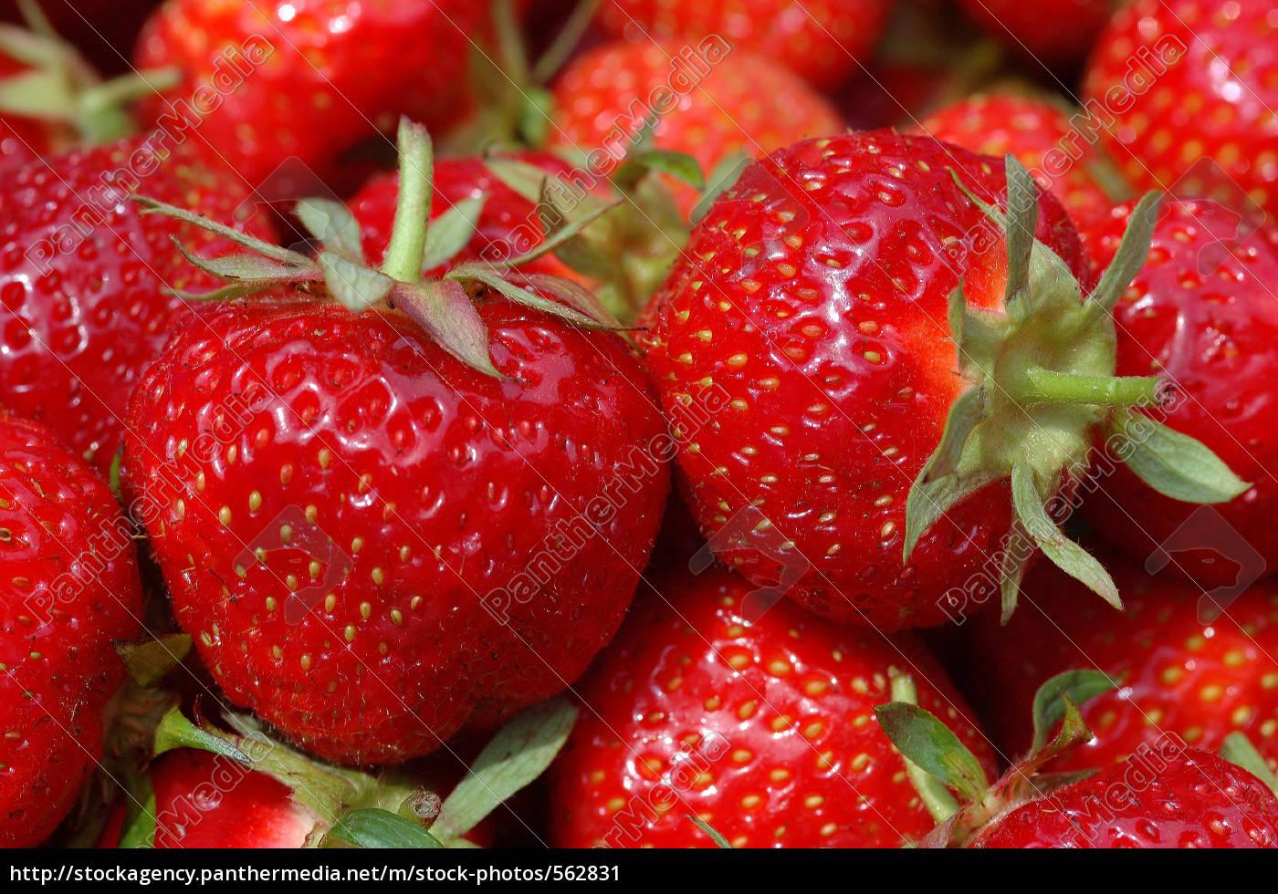 strawberries - 562831