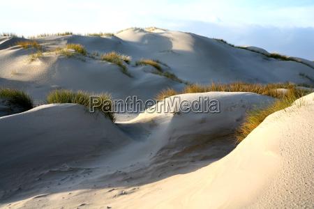 sand, dunes - 563807
