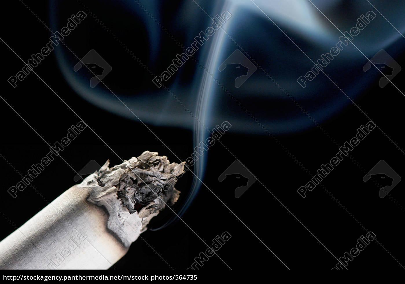 blue, haze - 564735