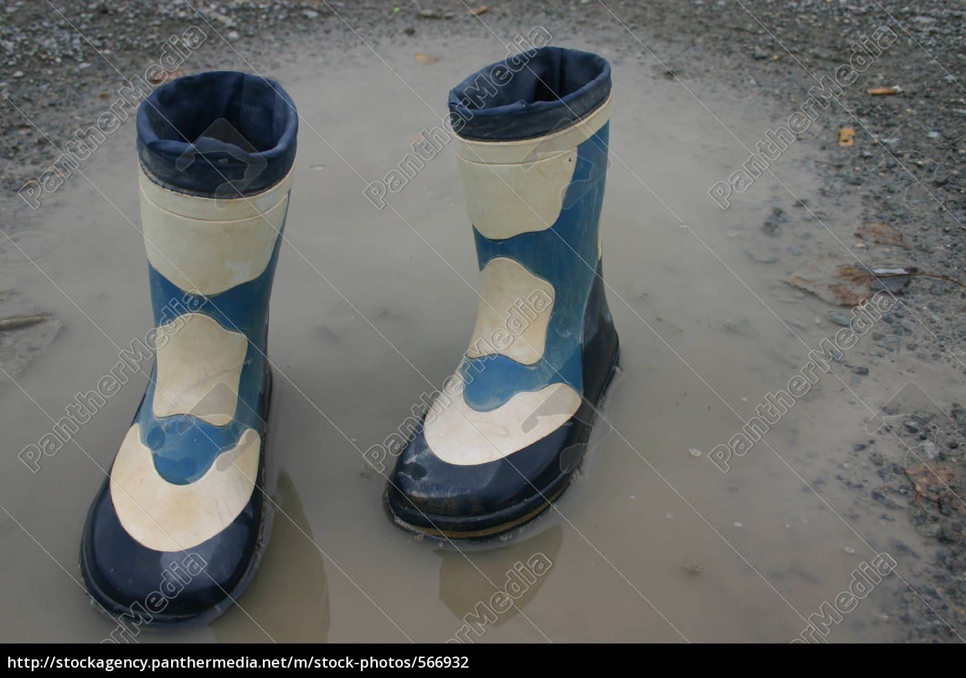 gummit, boots, in, puddle - 566932