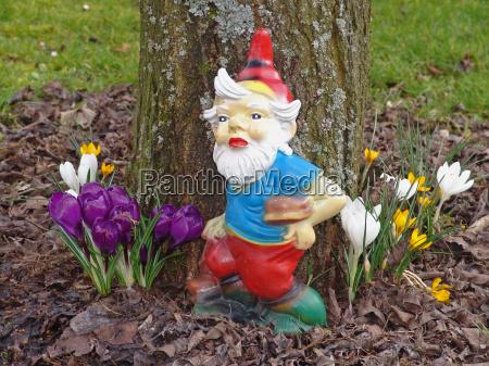 spring, awakening - 576071