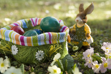 easter, bunny - 580678