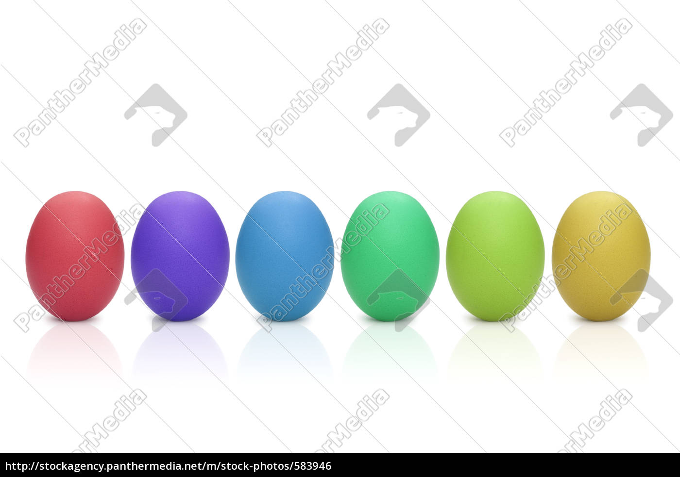eggs - 583946
