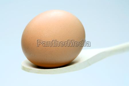 egg - 584040