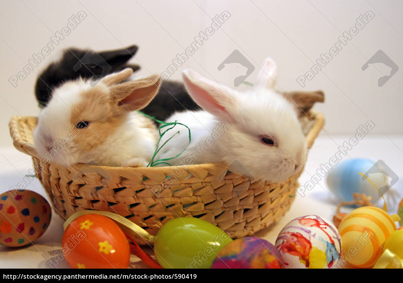 happy, easter - 590419