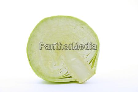 white, cabbage - 595263