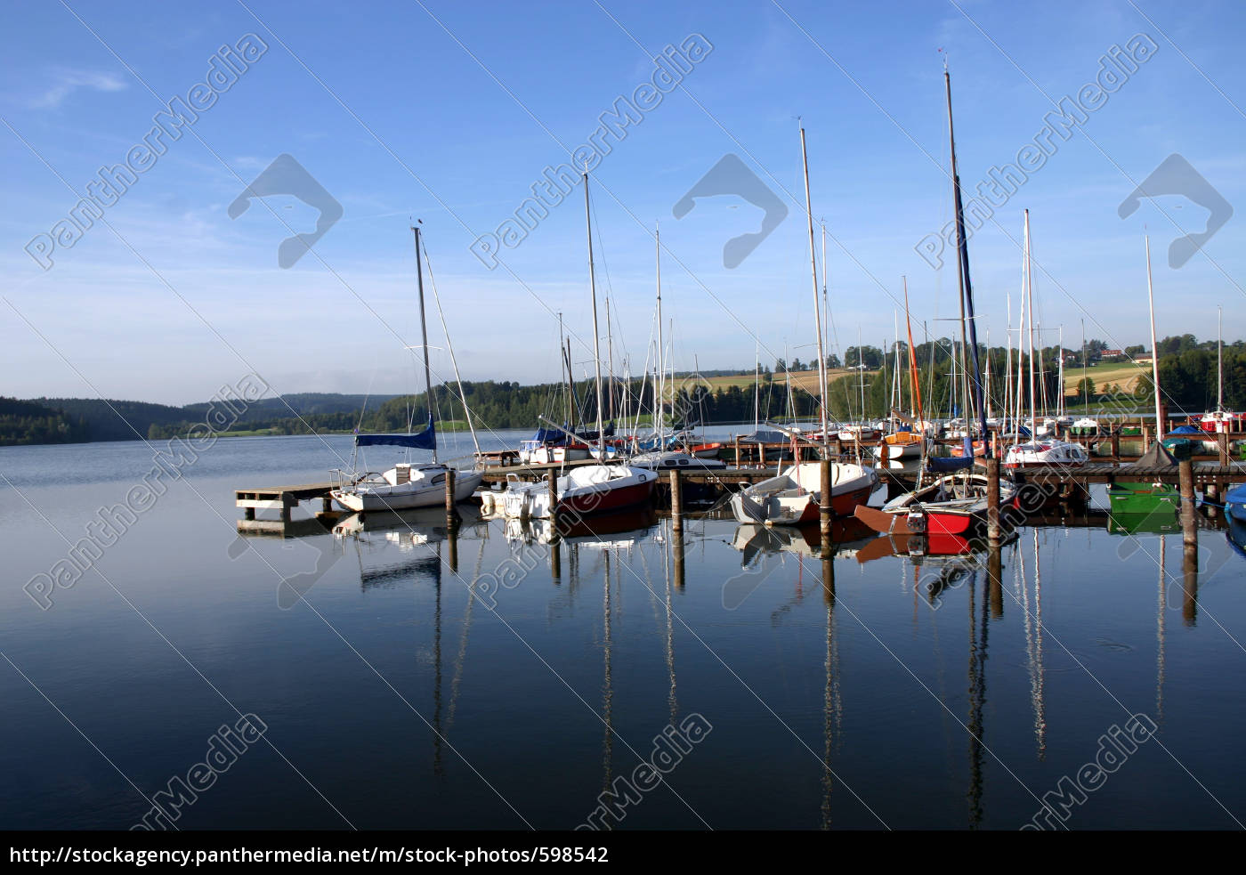 web, with, sailboats - 598542