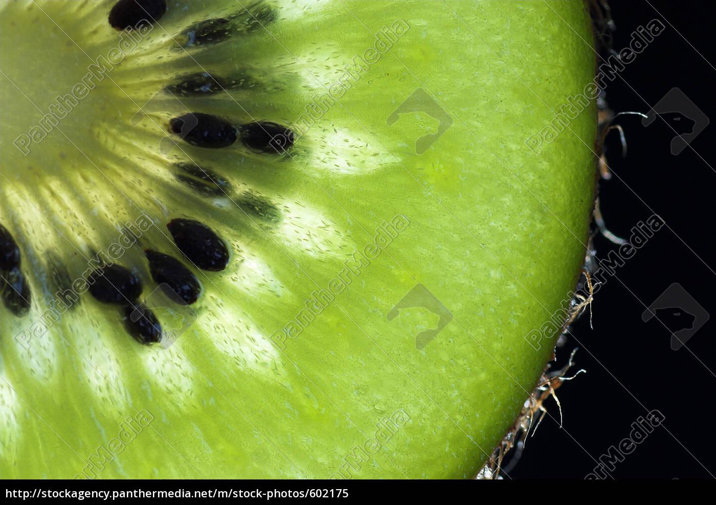 kiwi - 602175