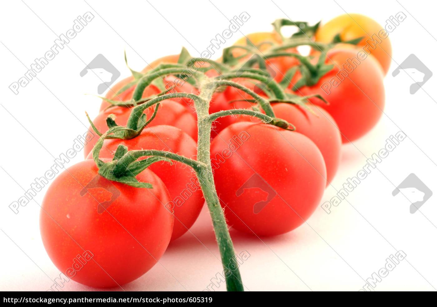tomatoes - 605319