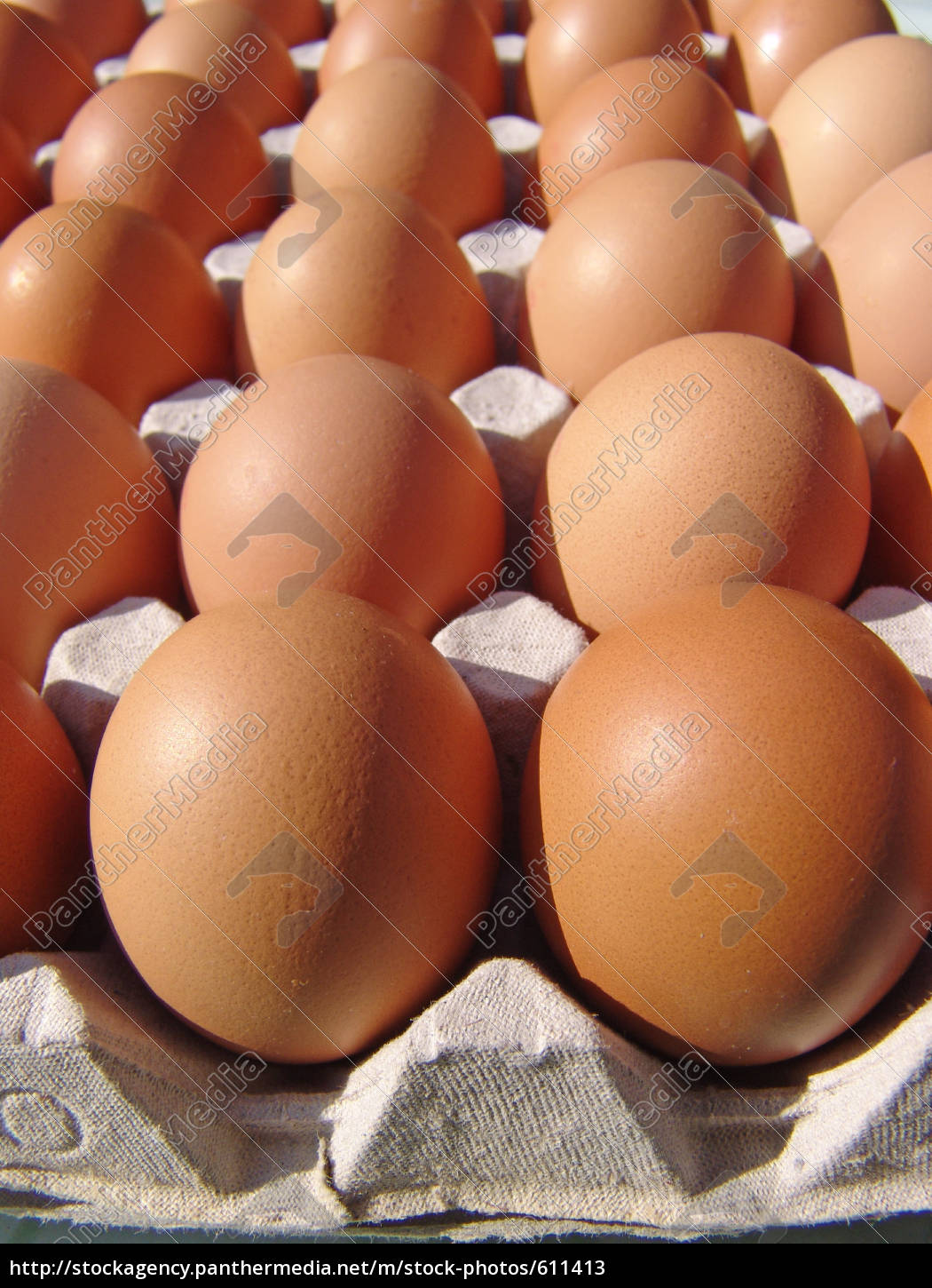 brown, eggs - 611413