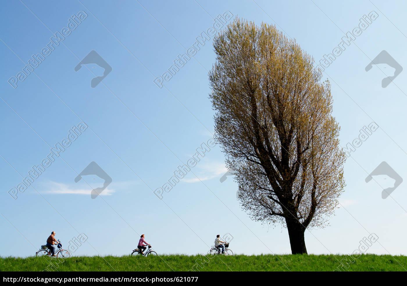 bicycle, tour - 621077