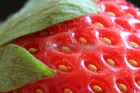 strawberry, red - 622971