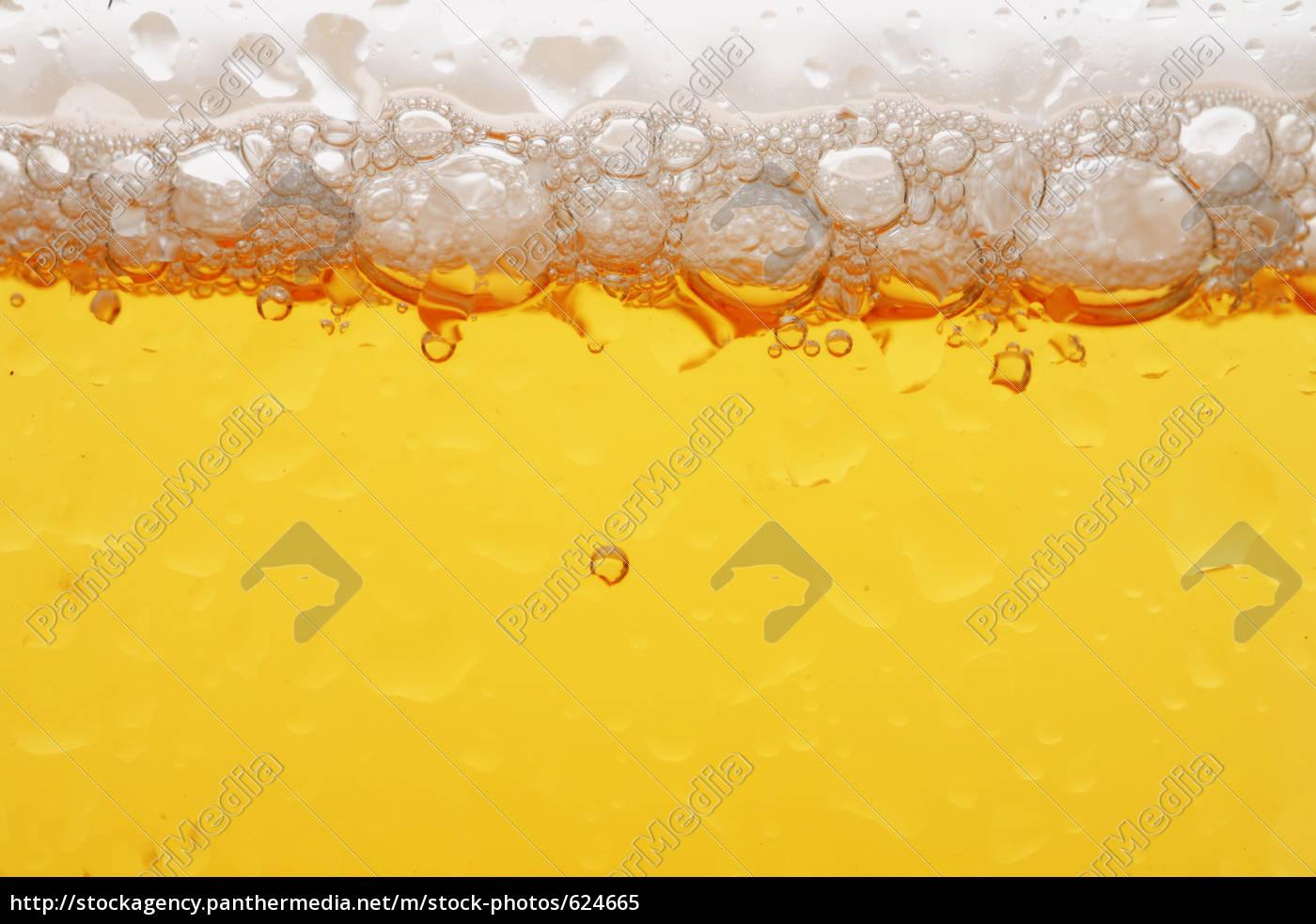 beer - 624665