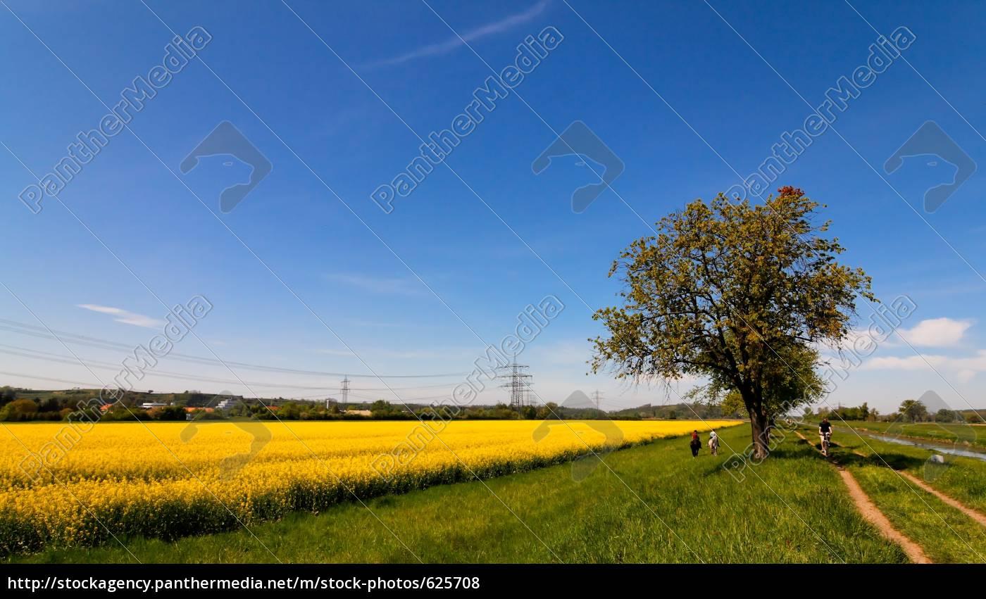 spring, mood - 625708