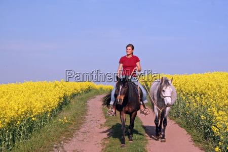 riding between fields