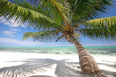 idilio beach
