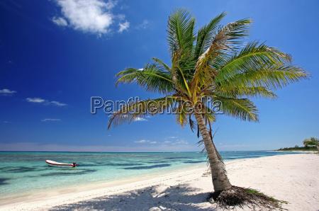 summer, sun, beach, and, sea - 629502