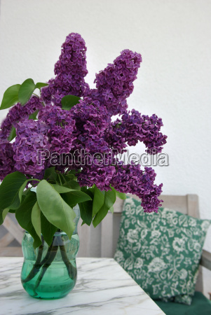 lilacs, from, the, garden - 632319