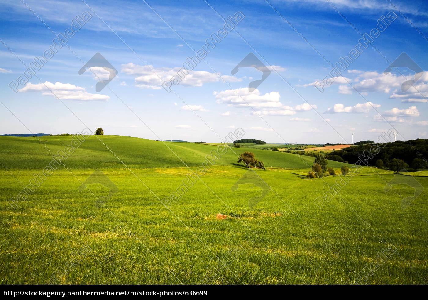 landscape - 636699