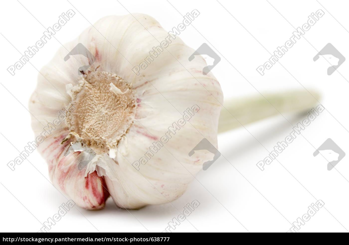 fresh, garlic - 638777