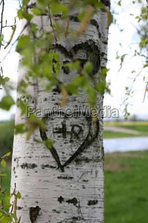 love, oath - 638663
