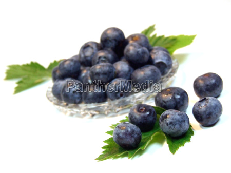 blueberries - 639382