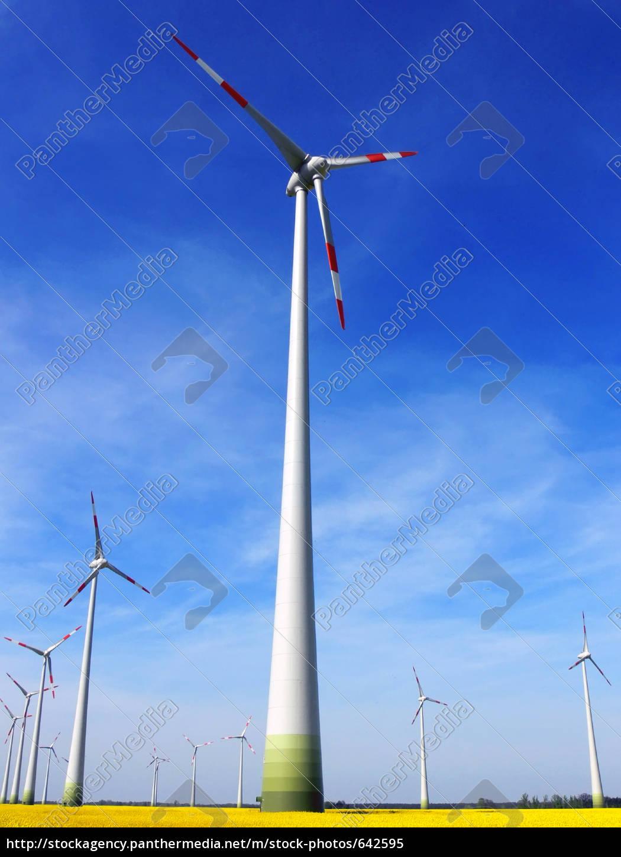 wind, park - 642595