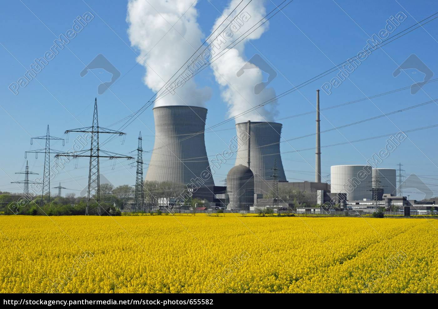 nuclear, power, plant, and, rapeseed, field - 655582