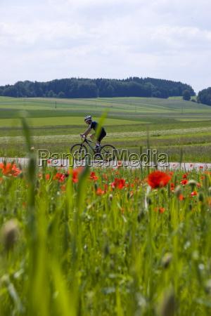 cyclist - 658479
