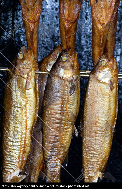 fish, smoking - 664378