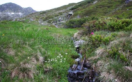 mountain stream no 1