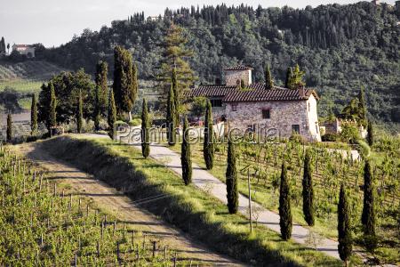 winery - 666305
