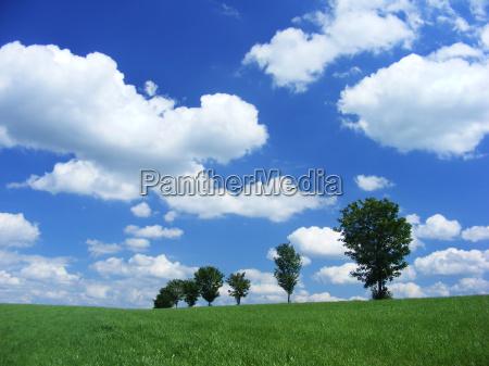 summer, day - 676496