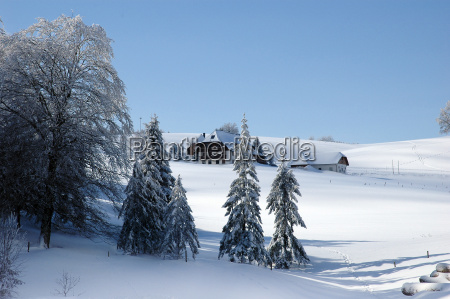 winter landscape 11