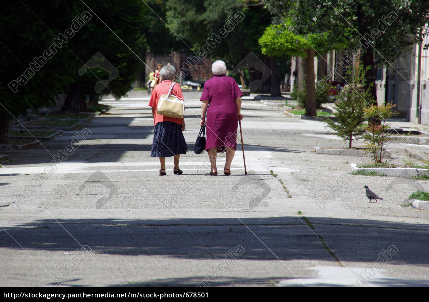 two, old, ladies, traveling, together - 678501