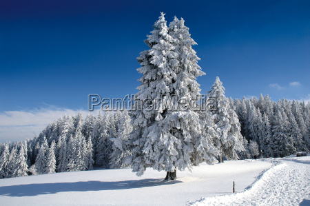 winter, landscape, 9 - 678555