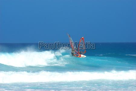 windsurfer - 686883