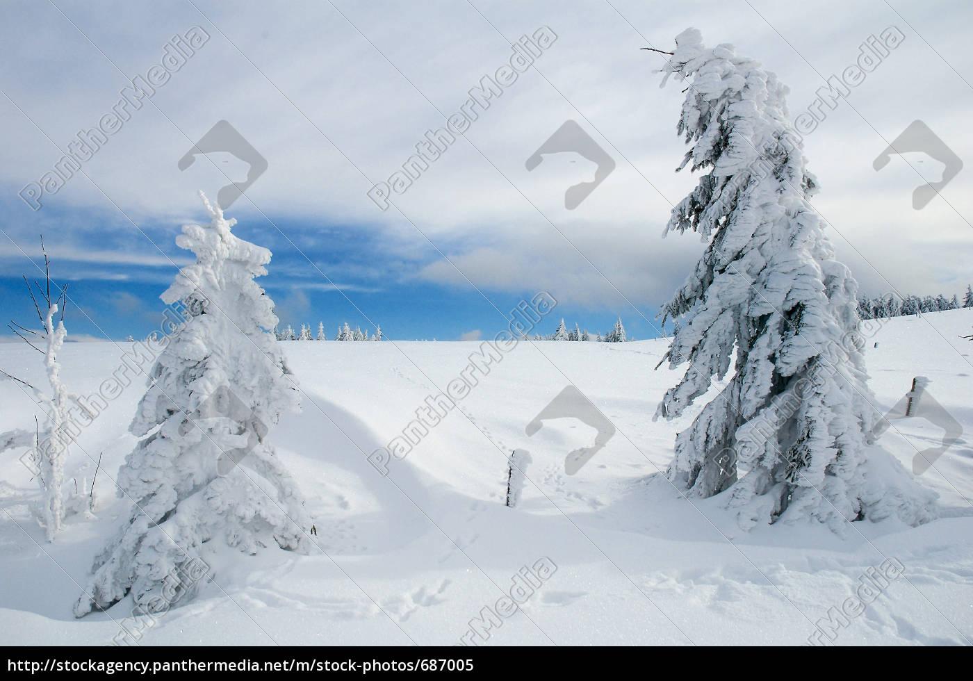 winter, landscape, 21 - 687005