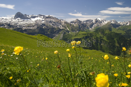 mountain, panorama, of, oberried, from, the - 692327